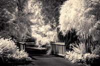 Garden & Bridge IR 2