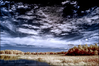 "Infrared, ""Colort Infrared, Landscapes, Nature"